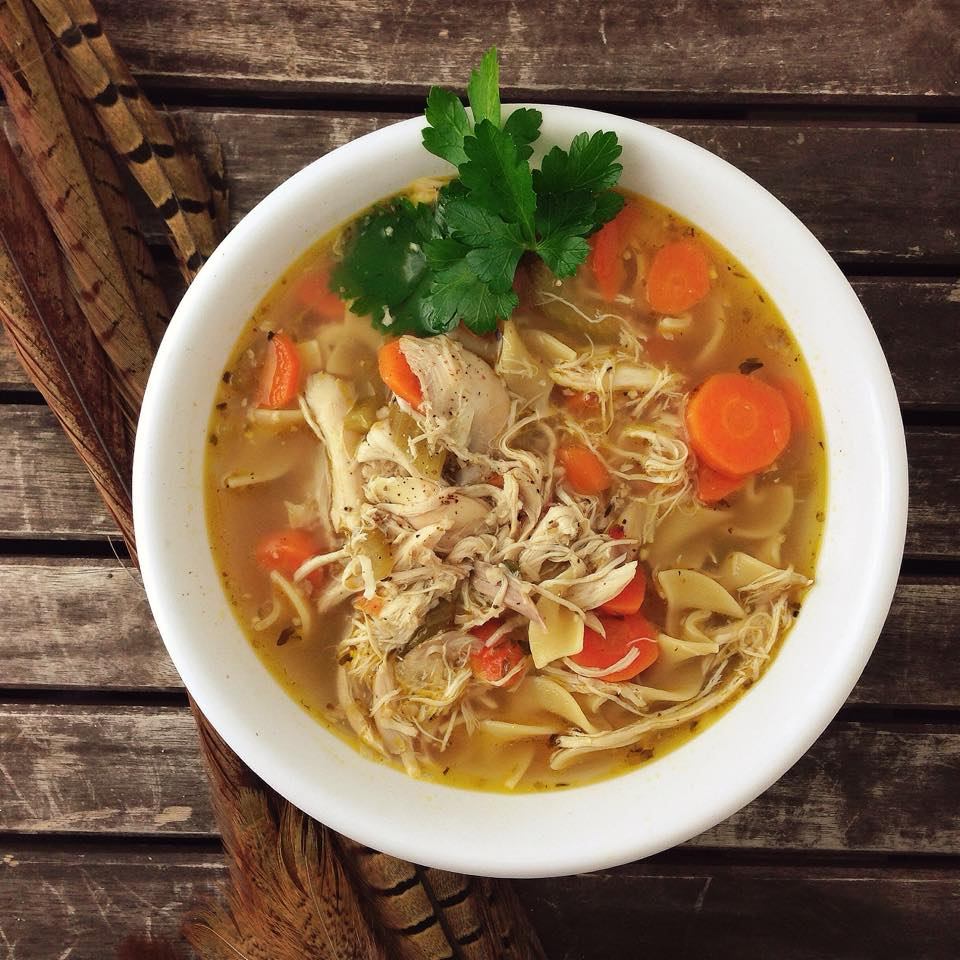 recipe: pheasant noodle soup recipes [6]