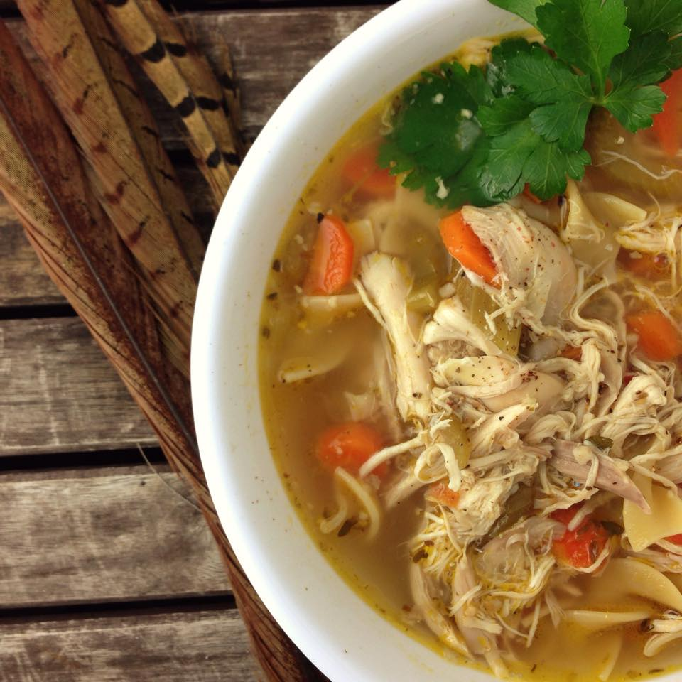 recipe: pheasant noodle soup recipes [13]